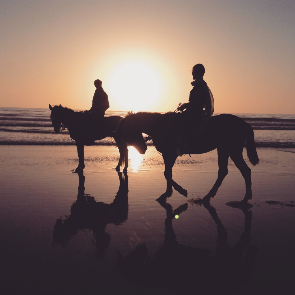 sunset-horse-ride-morocco